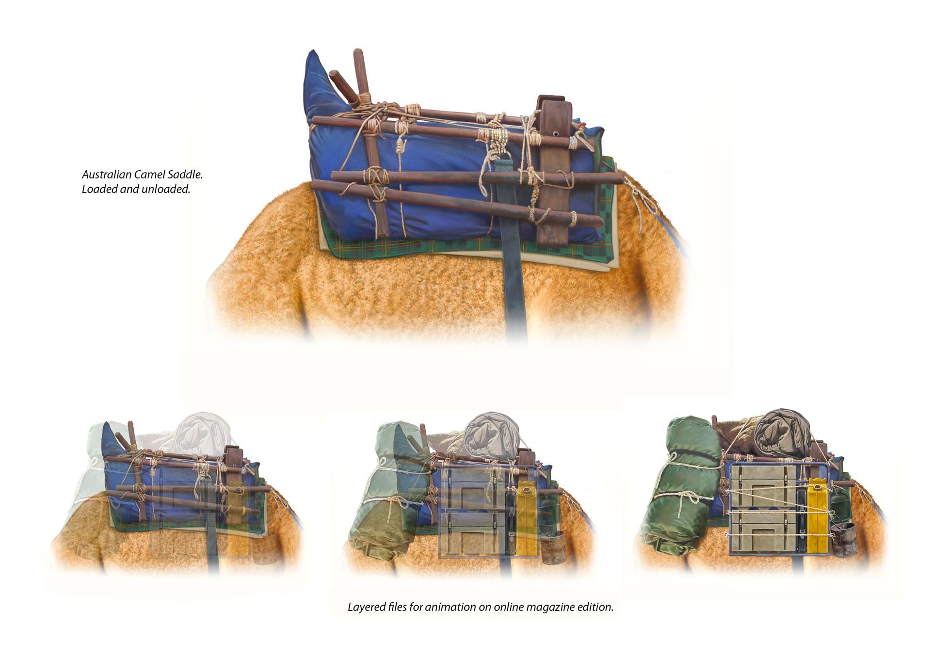 10-camel-saddle